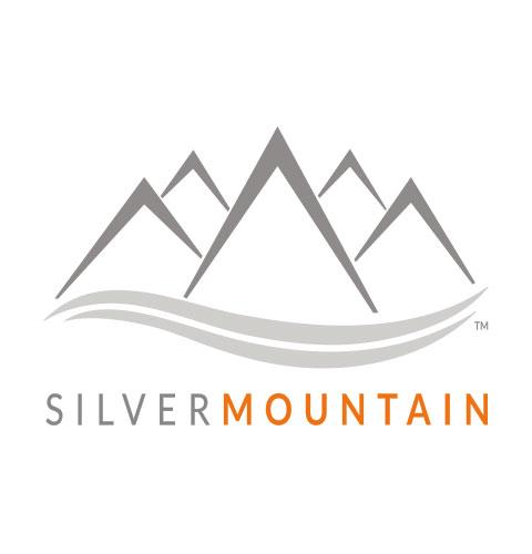 silver mountain partner logo